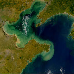 red tide in the Bohai Sea